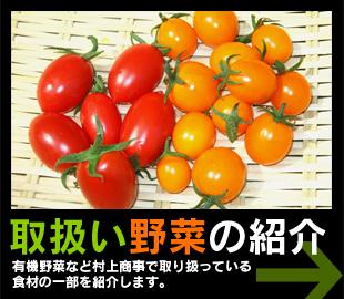 取扱い野菜の紹介